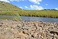 Potok kod Splashy Fan - panoramio.jpg