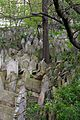 Praha Old Jewish Cemetery 20170501 09.jpg