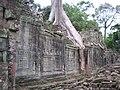 Preah Khan - Vasters 0420 (6597719179).jpg