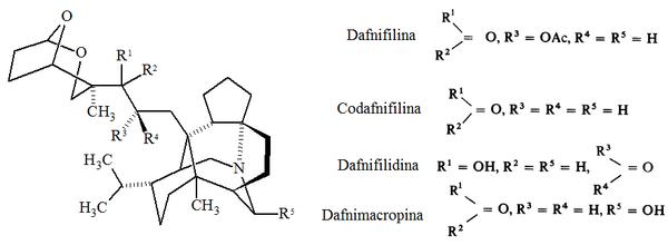 Pseudoalcaloides de Daphniphyllum.png