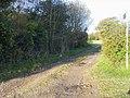 Public Bridleway BR19 - geograph.org.uk - 1047818.jpg