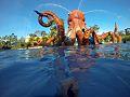 Puerto Triunfo Octopus Hacienda Nápoles.jpg