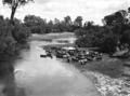 Queensland State Archives 2150 Wivenhoe Crossing Fernvale Upper Brisbane River 1945.png