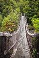 Río Ventisquero bridge, Ventisquero Colgante trail, Queulat National Park, Chile.jpg