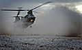 RAF Chinook Helicopter MOD 45157580.jpg