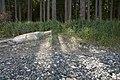 Rathtrevor Beach Provincial Park (5108813946).jpg