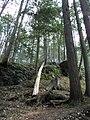 Raymondskill Falls - Pennsylvania (5677472867).jpg