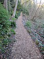 Reed Canyon, Portland, Oregon (2013) - 12.JPG
