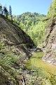 Reichraminger Hintergebirge Triftsteig I 20080507.jpg