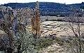Restes del monestir de Vallsanta (Guimerà) - 8.jpg