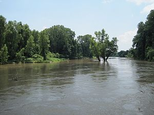 Reverie, Tennessee - View to the NE along the Mississippi riverbed (2010)
