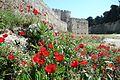 Rhodes Medieval Moat (5679202073).jpg