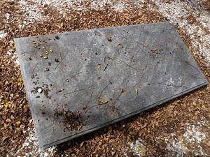 Matthew Tilghman - Grave of Matthew Tilghman at Rich Neck Manor