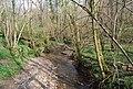 River Dudwell, Green Wood - geograph.org.uk - 1252976.jpg