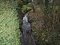 River Yar - geograph.org.uk - 121300.jpg
