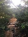 River in Millenium park - Abuja.jpg