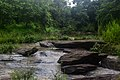 Rivière et roche.jpg