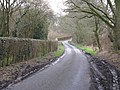 Road south to Upperton - geograph.org.uk - 1734734.jpg
