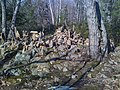Rock cairns in Penwood State Park 2, 8 March 2010.jpg