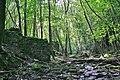 Rogerley quarry woods - geograph.org.uk - 499433.jpg