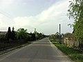 Rohozy (Podlaskie Voivodeship) road.jpg