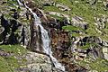 Rohtang Pass 2011 IMG 9665 (6890894437).jpg