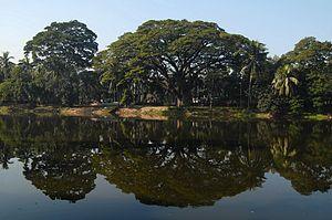 Ramna Park - Lake and Ramna Park shoreline.