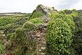 Roscanvel - Fort de la fraternité- 028.jpg