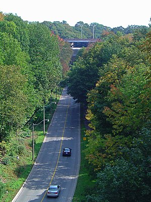 Toronto ravine system - A road cuts through part of the Rosedale Ravine, which is a section of Castle Frank Brook