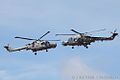 Royal Navy Black Cats Display Team (8642176467).jpg