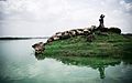 Rudramata Dam. A rain water reservoir that supplies water to deserted areas around capital city of Bhuj.jpg