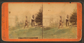 Rural gardening, Philadelphia, Pa, from Robert N. Dennis collection of stereoscopic views.png