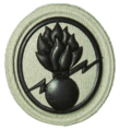 SANDF Qualification Demolitions Level One badge embossed.png