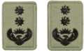 SANDF Rank Insignia Colonel embossed badge.png