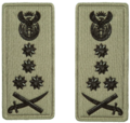 SANDF Rank Insignia General embossed badge.png