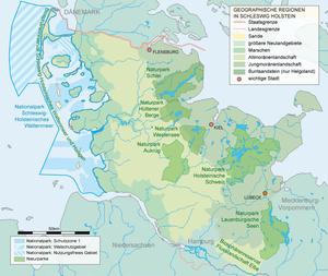 Schleswig Holstein Heraldik Wiki