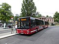 SL bus line 67 at Skansen.jpg