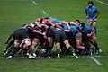 ST vs Treviso 2013 (40).JPG