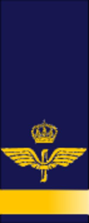 Fänrik - Image: SWE Airforce fänrik
