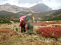 Sa Crne Glave ka Ursulovačkom jezeru - panoramio.jpg