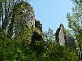 Saint-Front-la-Rivière ruines la Renaudie (52).JPG