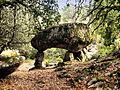 San-Gavino-di-Carbini dolmen.jpg