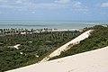 Sand buggying (8227130612).jpg