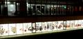 Sanduzelaiko Biblioteka gauez -Vista nocturna de la Biblioteca de San Jorge.png