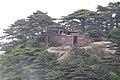 Sanqing Shan 2013.06.15 12-38-41.jpg