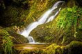 Sasbachwalden - Gaishöll Wasserfälle (14621184227).jpg