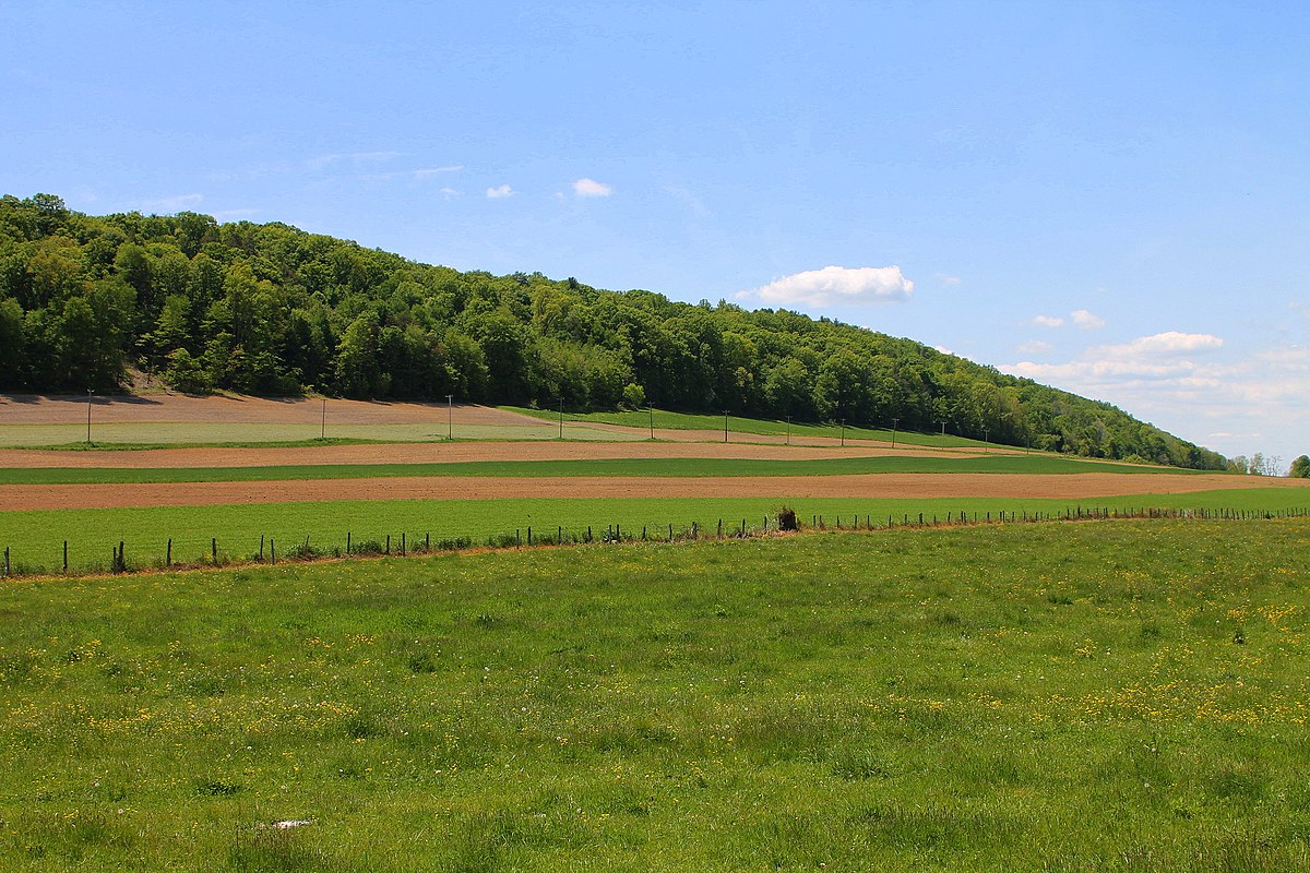 snyder county Search snyder county real estate property listings to find homes for sale in snyder county, pa browse houses for sale in snyder county today.