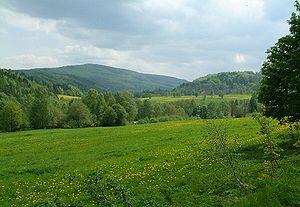 Lusatian Mountains - Pěnkavčí vrch