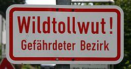 Schild Wildtollwut