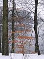 Schlossgarten Eutin 1.jpg